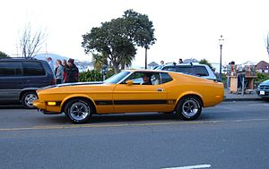 Ford Mustang I (1971-1973)